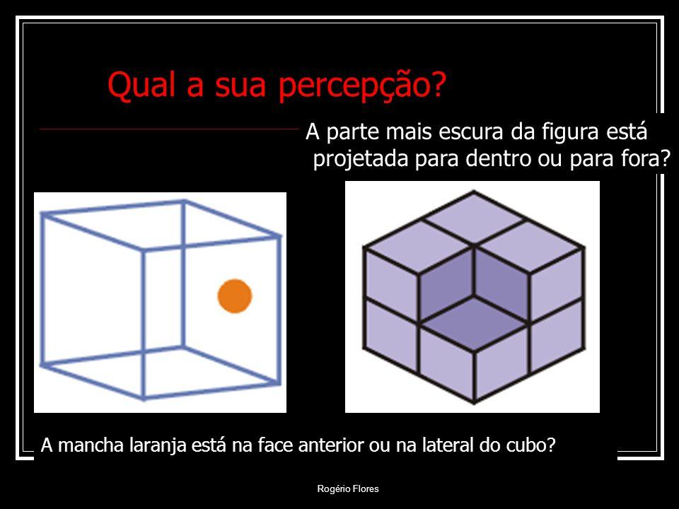 Rogério Flores A mancha laranja está na face anterior ou na lateral do cubo? Qual a sua percepção? A parte mais escura da figura está projetada para d