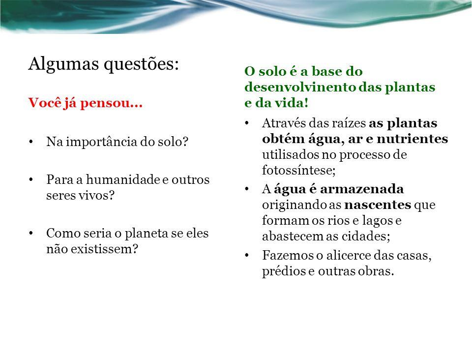 Relevo Formas diferentes => distribbuição diferente da água, de luz e calor; Pode favorecer erosão; Áreas côncavas e baixas => acúmulo de água.