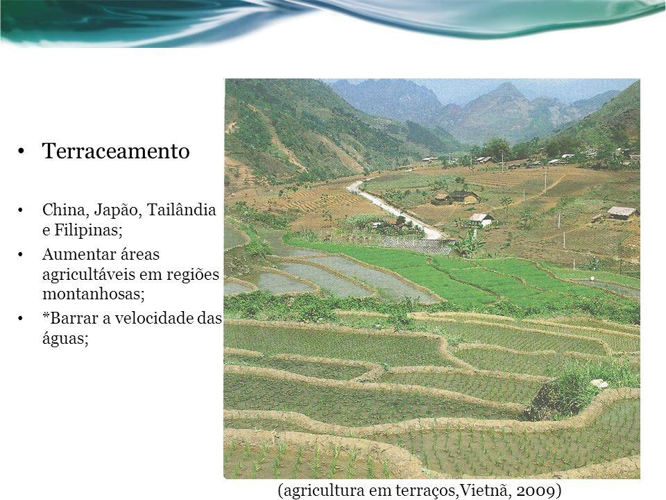Terraceamento China, Japão, Tailândia e Filipinas; Aumentar áreas agricultáveis em regiões montanhosas; *Barrar a velocidade das águas; (agricultura em terraços,Vietnã, 2009)