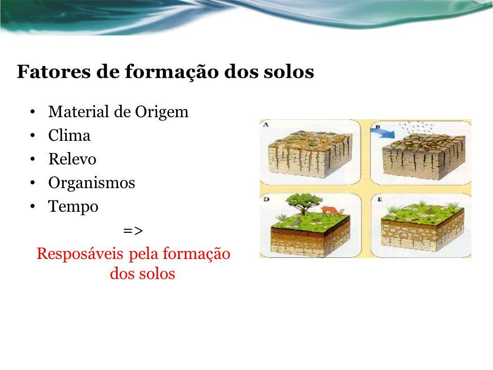 Fatores de formação dos solos Material de Origem Clima Relevo Organismos Tempo => Resposáveis pela formação dos solos