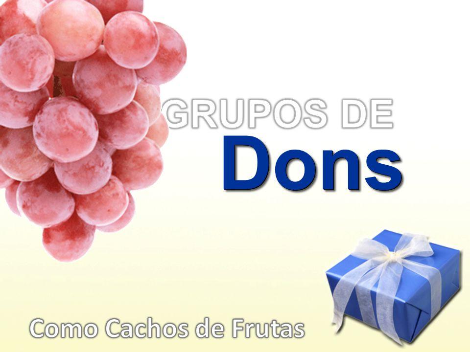 DonsDons