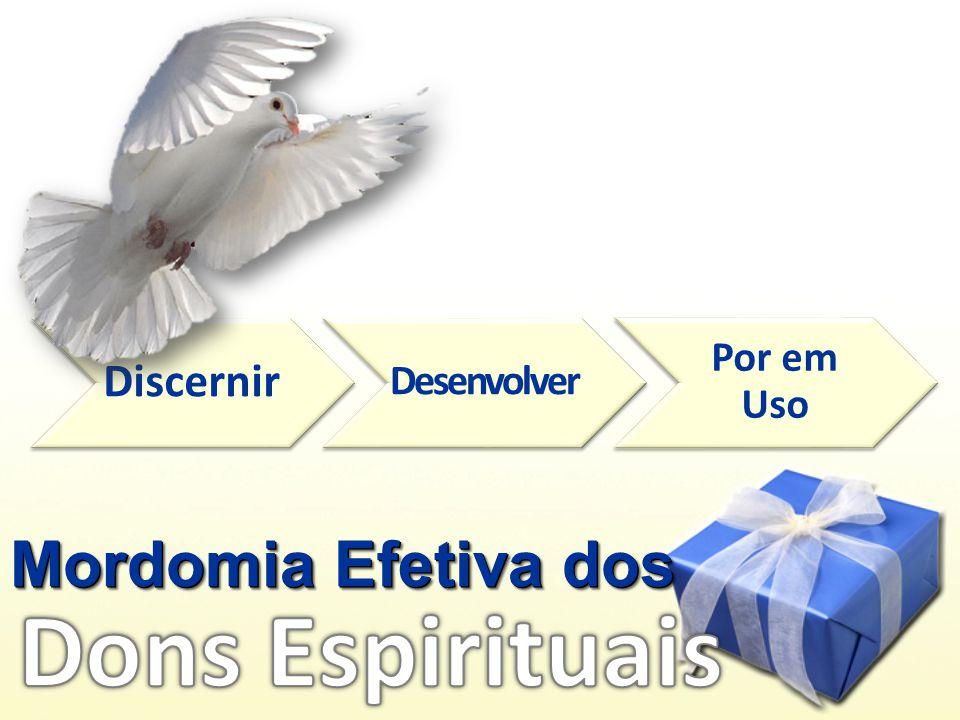 Mordomia Efetiva dos Discernir Desenvolver Por em Uso