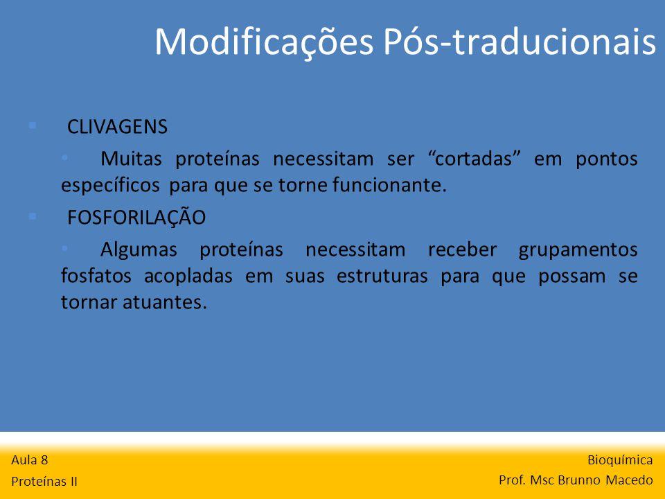 Modificações Pós-traducionais Bioquímica Prof. Msc Brunno Macedo Aula 8 Proteínas II CLIVAGENS Muitas proteínas necessitam ser cortadas em pontos espe