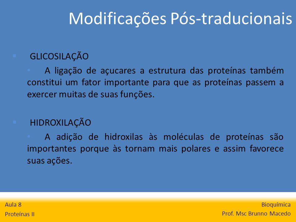 Modificações Pós-traducionais Bioquímica Prof. Msc Brunno Macedo Aula 8 Proteínas II GLICOSILAÇÃO A ligação de açucares a estrutura das proteínas tamb
