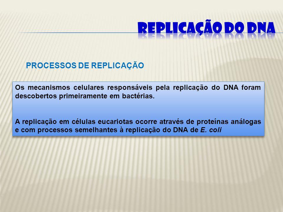 Dispersiva Conservativa Semiconservativa Unidirecional ou Bidirecional.