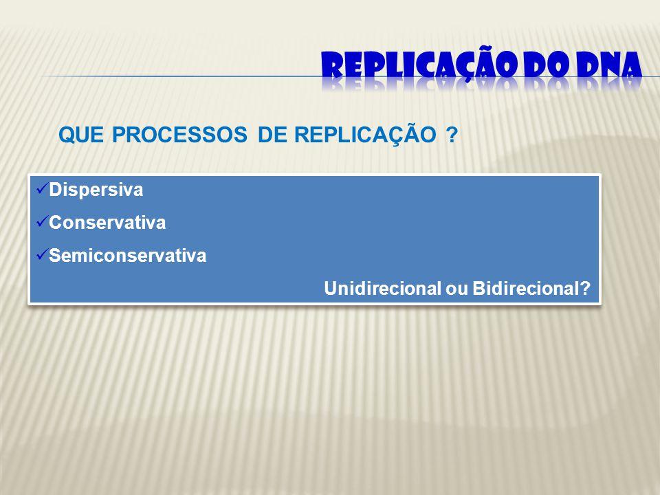 HIPÓTESES EXPLICATIVAS DO PROCESSO DE REPLICAÇÃO