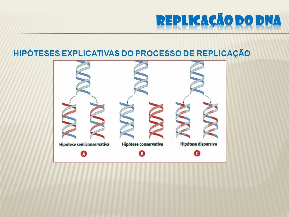 Células de E.