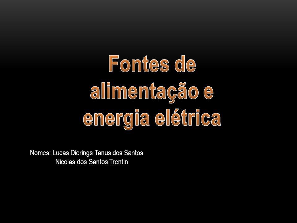 Nomes: Lucas Dierings Tanus dos Santos Nicolas dos Santos Trentin