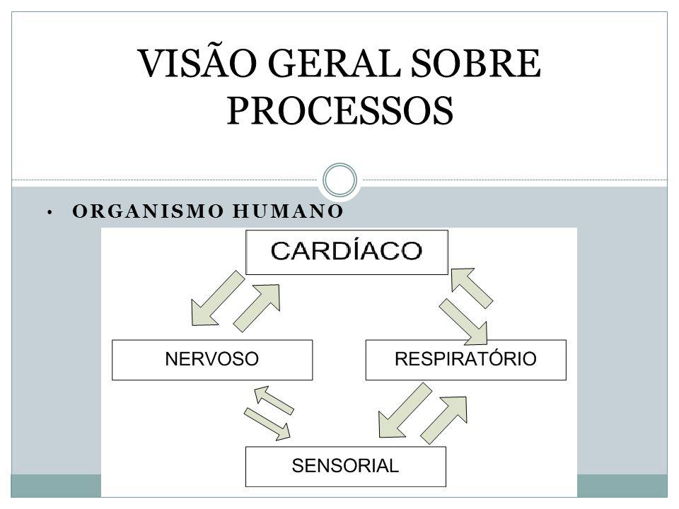 ORGANISMO HUMANO VISÃO GERAL SOBRE PROCESSOS