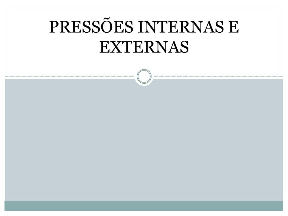 EXEMPLOS: PRESSÃO TECNOLÓGICA EXPLICAÇÃO GERENCIAMENTO PRESSÃO DA CONCORRÊNCIA EXPLICAÇÃO GERENCIAMENTO PRESSÕES INTERNAS E EXTERNAS