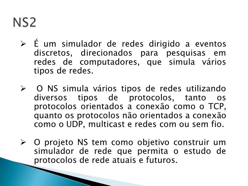 No NS, as configurações de entrada para a execução de uma simulação são feitas.