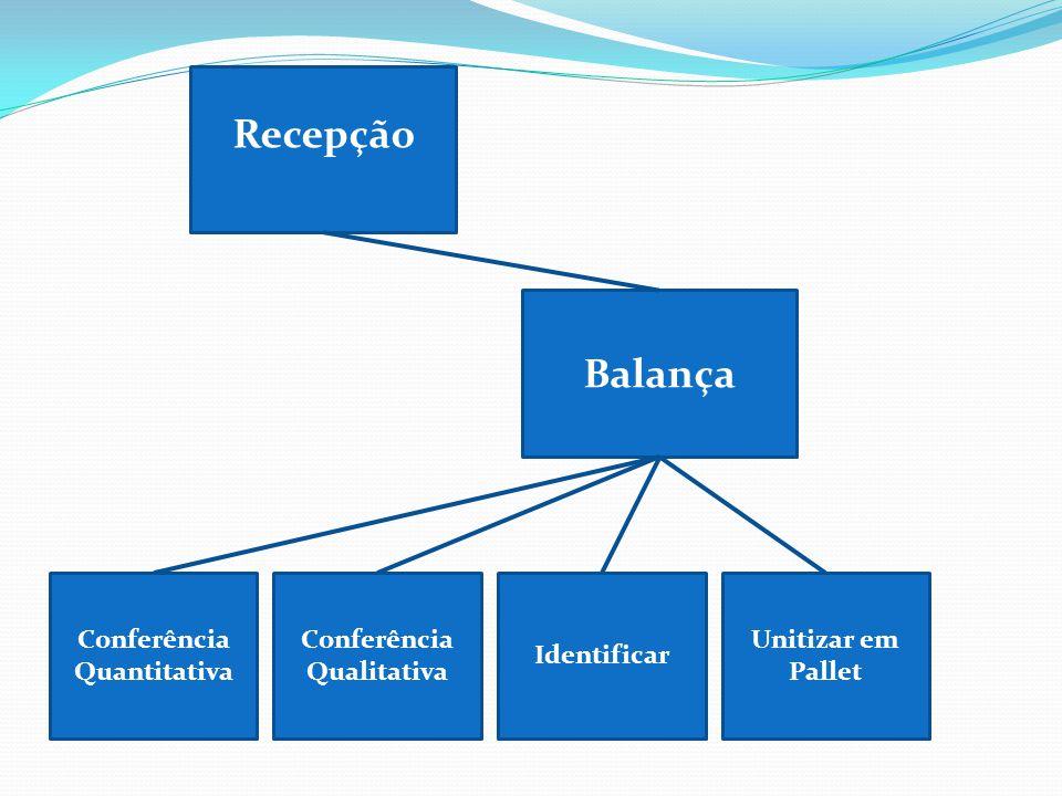 Conferência Qualitativa Balança Unitizar em Pallet Conferência Quantitativa Identificar Recepção