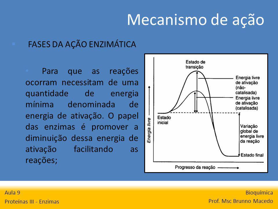 Mecanismo de ação Bioquímica Prof. Msc Brunno Macedo Aula 9 Proteínas III - Enzimas FASES DA AÇÃO ENZIMÁTICA Para que as reações ocorram necessitam de
