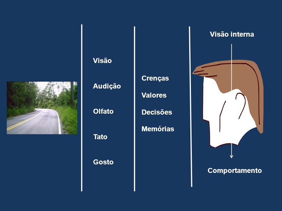 Visão Audição Olfato Tato Gosto Crenças Valores Decisões Memórias Visão interna Comportamento