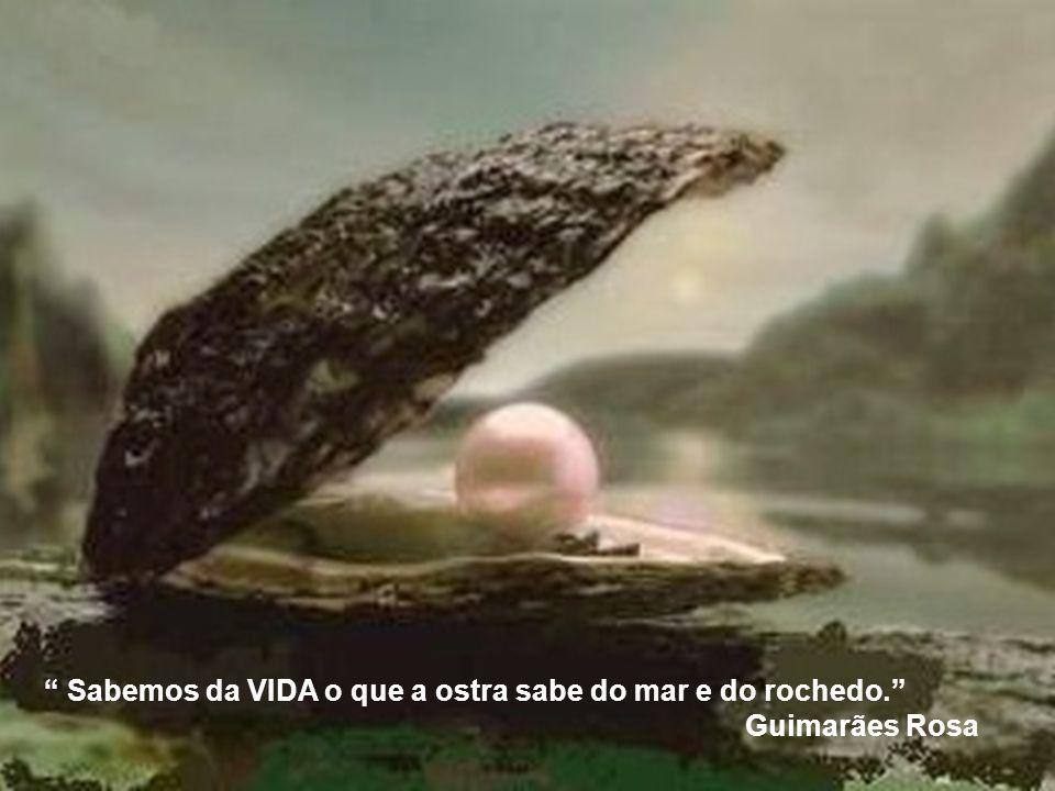 Sabemos da VIDA o que a ostra sabe do mar e do rochedo. Guimarães Rosa