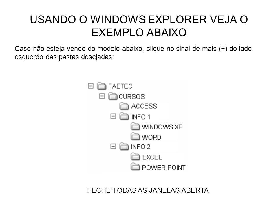 USANDO O WINDOWS EXPLORER VEJA O EXEMPLO ABAIXO FECHE TODAS AS JANELAS ABERTA Caso não esteja vendo do modelo abaixo, clique no sinal de mais (+) do l