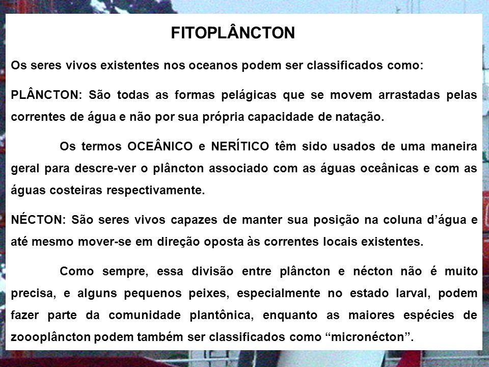 O FITOPLÂNCTON O fitoplâncton é o consumidor mais importante de substâncias inorgânicas dos oceanos e por sua vez é consumido pelo zooplâncton e assim por diante na cadeia alimentar.