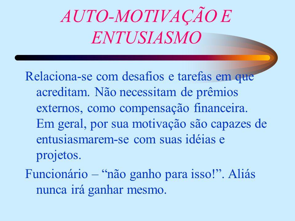 AUTO-MOTIVAÇÃO E ENTUSIASMO Relaciona-se com desafios e tarefas em que acreditam. Não necessitam de prêmios externos, como compensação financeira. Em