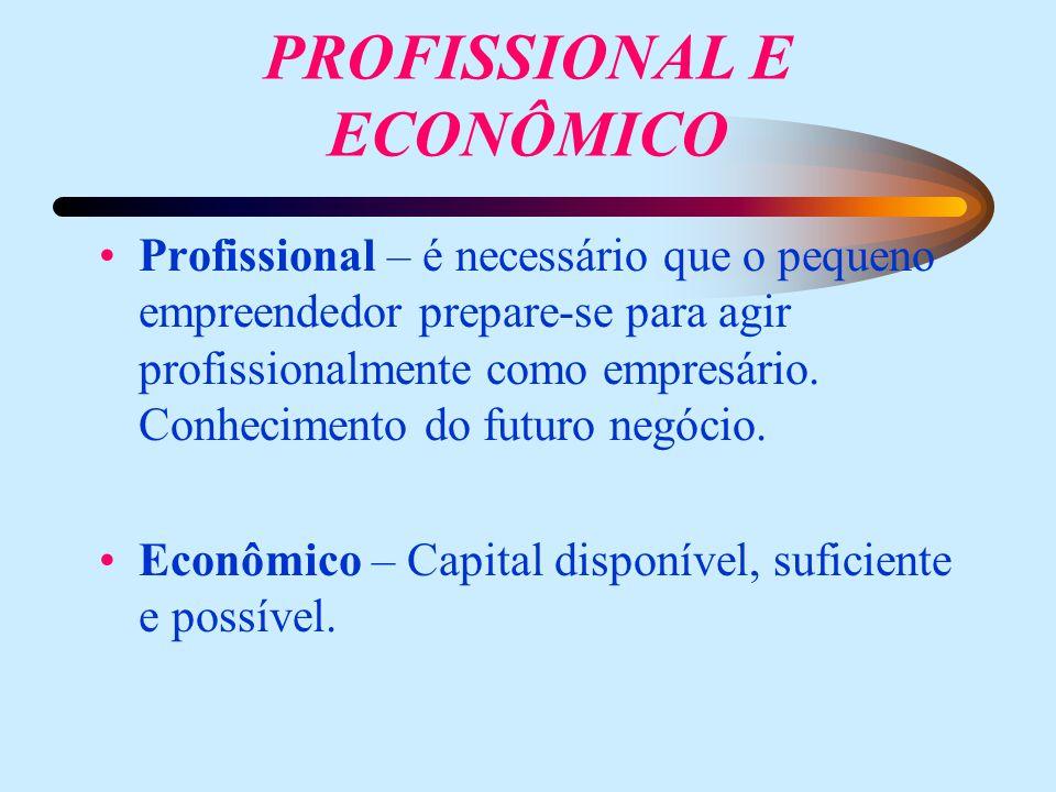 PROFISSIONAL E ECONÔMICO Profissional – é necessário que o pequeno empreendedor prepare-se para agir profissionalmente como empresário. Conhecimento d