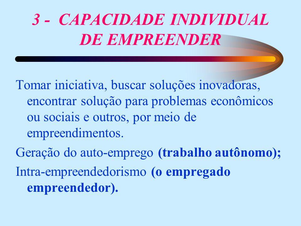 3 - CAPACIDADE INDIVIDUAL DE EMPREENDER Tomar iniciativa, buscar soluções inovadoras, encontrar solução para problemas econômicos ou sociais e outros,