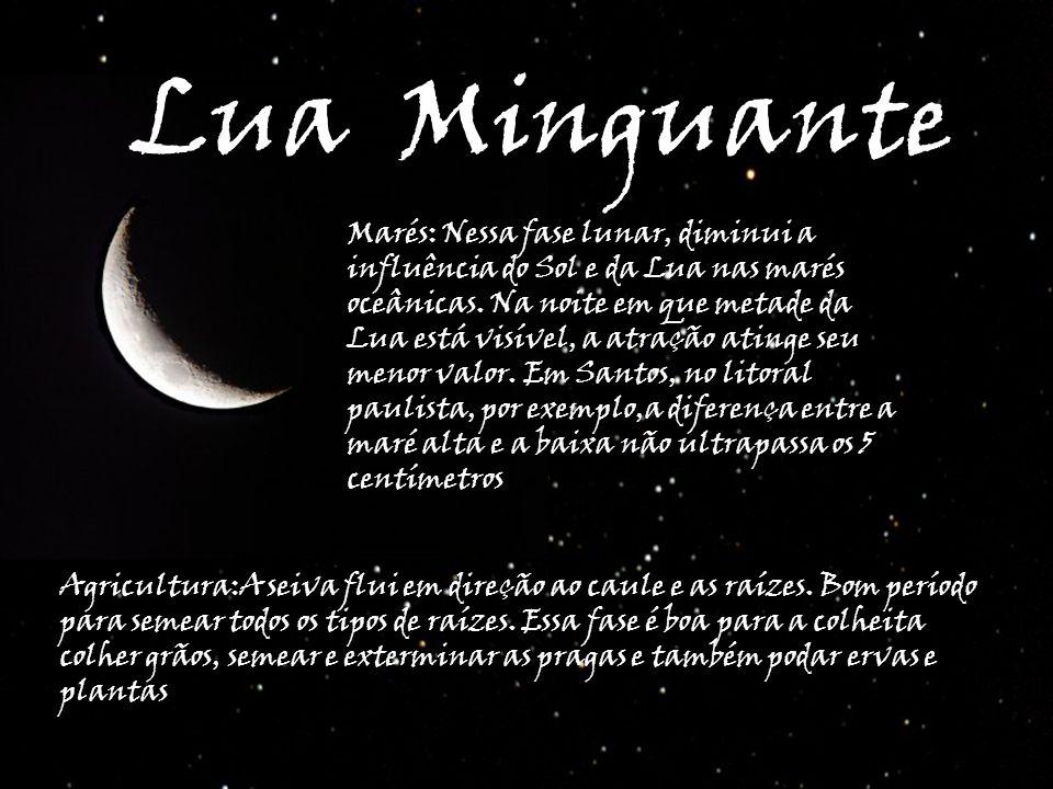 Lua Minguante Marés: Nessa fase lunar, diminui a influência do Sol e da Lua nas marés oceânicas. Na noite em que metade da Lua está visível, a atração