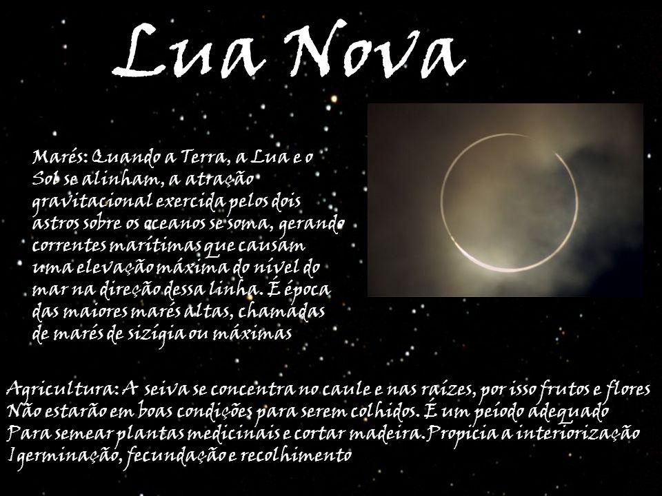 Lua Nova Marés: Quando a Terra, a Lua e o Sol se alinham, a atração gravitacional exercida pelos dois astros sobre os oceanos se soma, gerando corrent
