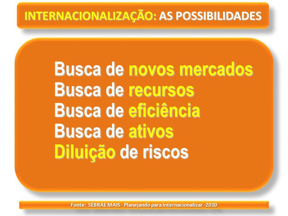 INTERNACIONALIZAÇÃO: AS POSSIBILIDADES Busca de novos mercados Busca de recursos Busca de eficiência Busca de ativos Diluição de riscos Busca de novos