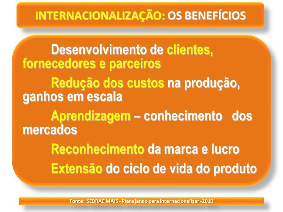 INTERNACIONALIZAÇÃO: OS BENEFÍCIOS Desenvolvimento de clientes, fornecedores e parceiros Redução dos custos na produção, ganhos em escala Aprendizagem