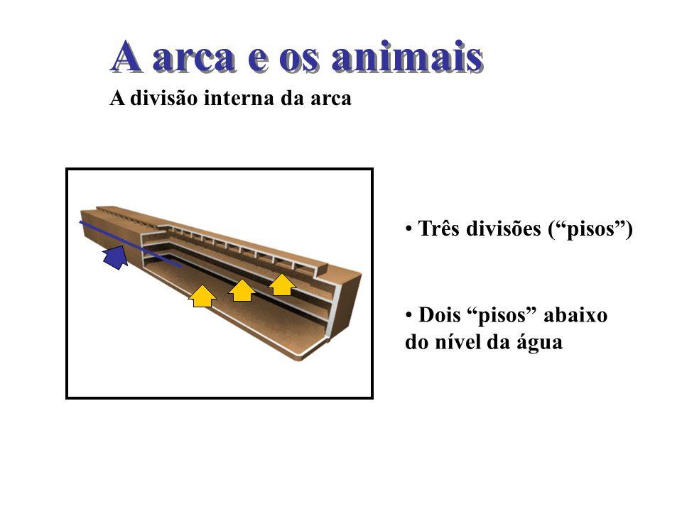 Três divisões (pisos) Dois pisos abaixo do nível da água A arca e os animais A divisão interna da arca