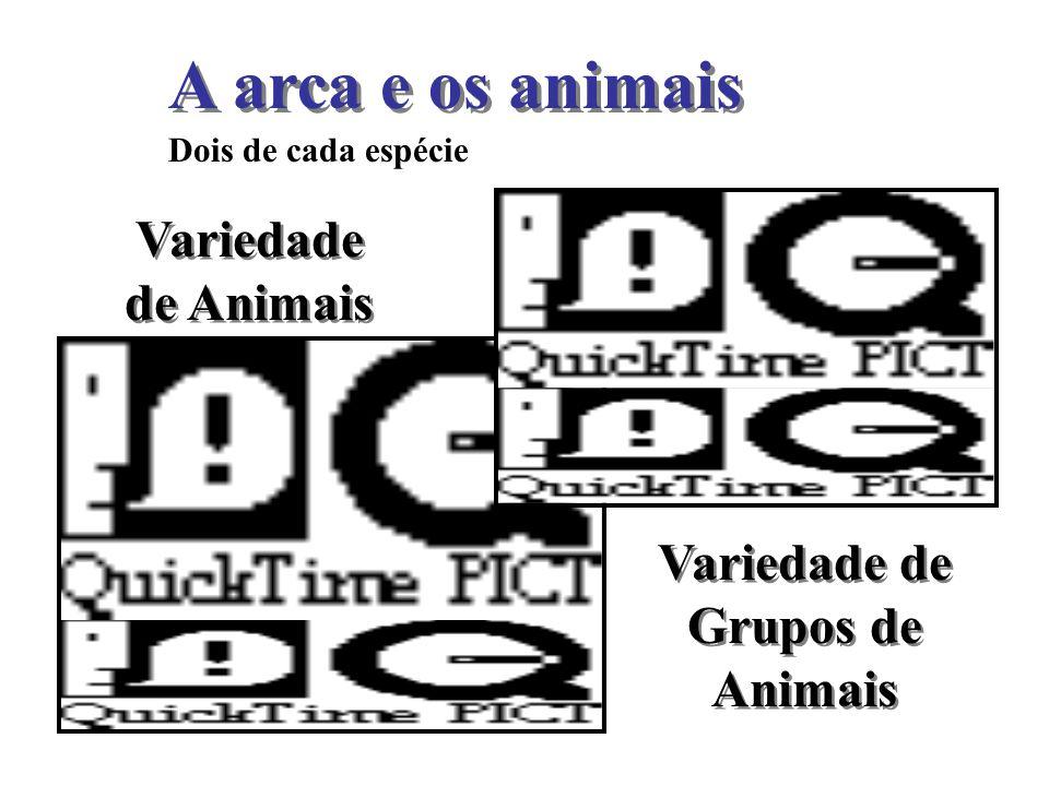 A arca e os animais Dois de cada espécie Variedade de Grupos de Animais Variedade de Animais