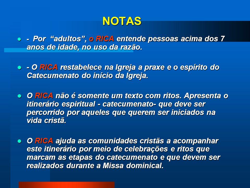 NOTAS - Por adultos, o RICA entende pessoas acima dos 7 anos de idade, no uso da razão.