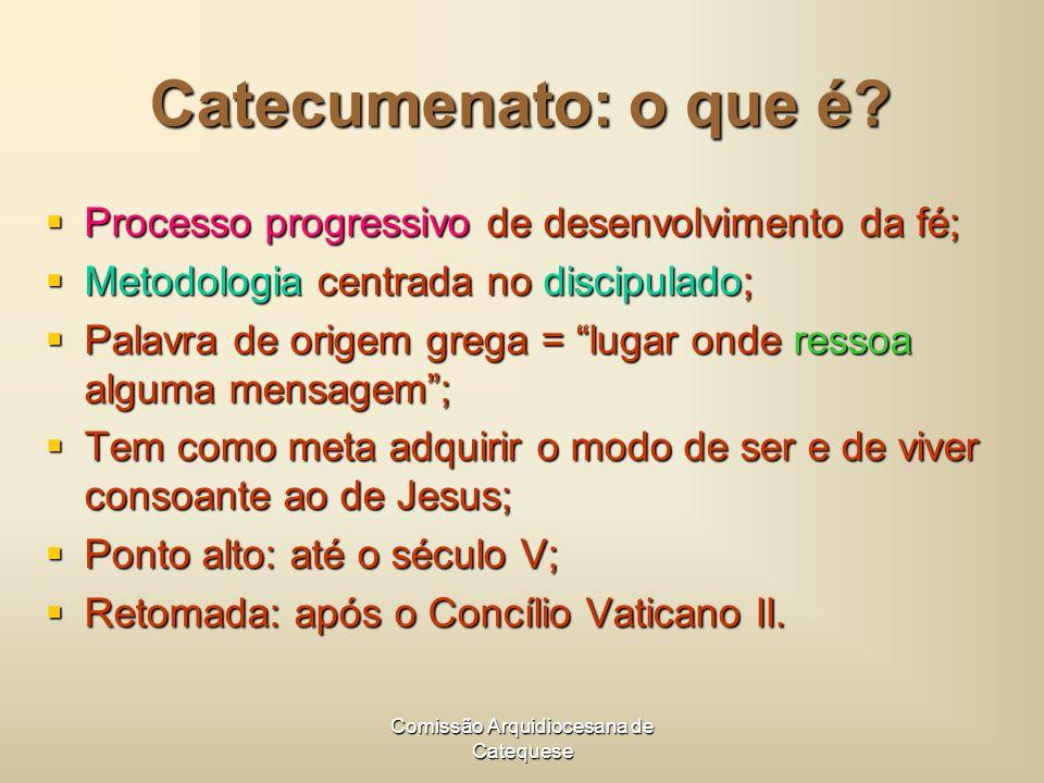 Comissão Arquidiocesana de Catequese Catecumenato: o que é.