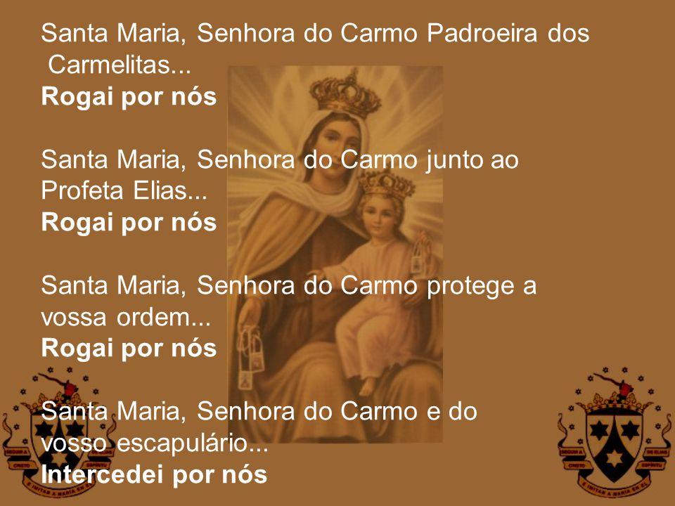 Santa Maria, Senhora do Carmo Padroeira dos Carmelitas... Rogai por nós Santa Maria, Senhora do Carmo junto ao Profeta Elias... Rogai por nós Santa Ma
