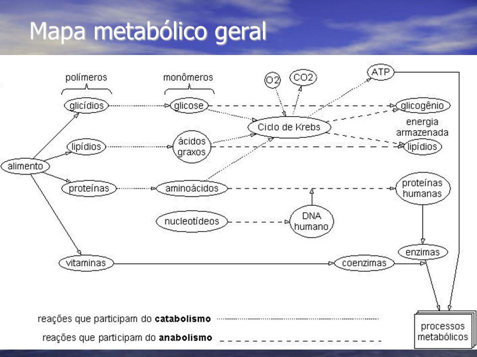 Mapa metabólico geral