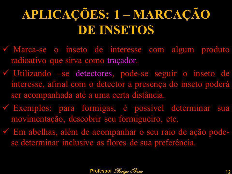 12 Professor Rodrigo Penna APLICAÇÕES: 1 – MARCAÇÃO DE INSETOS Marca-se o inseto de interesse com algum produto radioativo que sirva como traçador.