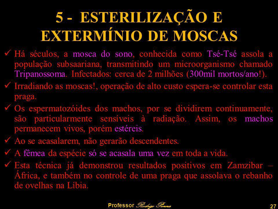 27 Professor Rodrigo Penna 5 - ESTERILIZAÇÃO E EXTERMÍNIO DE MOSCAS Há séculos, a mosca do sono, conhecida como Tsé-Tsé assola a população subsaariana, transmitindo um microorganismo chamado Tripanossoma.