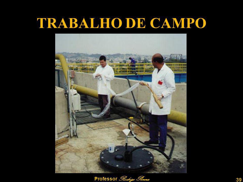 39 Professor Rodrigo Penna TRABALHO DE CAMPO