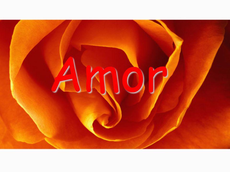 Criação: Carlos Poema: Amor, Mario Quintana Som: S. Garden (Reflection)