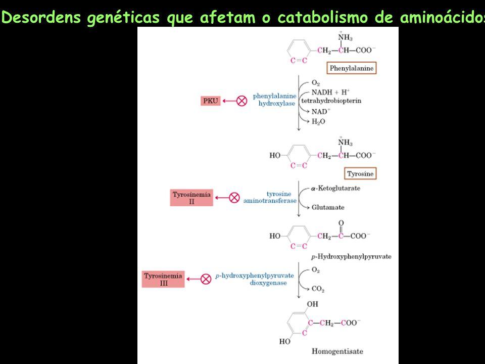 Desordens genéticas que afetam o catabolismo de aminoácidos