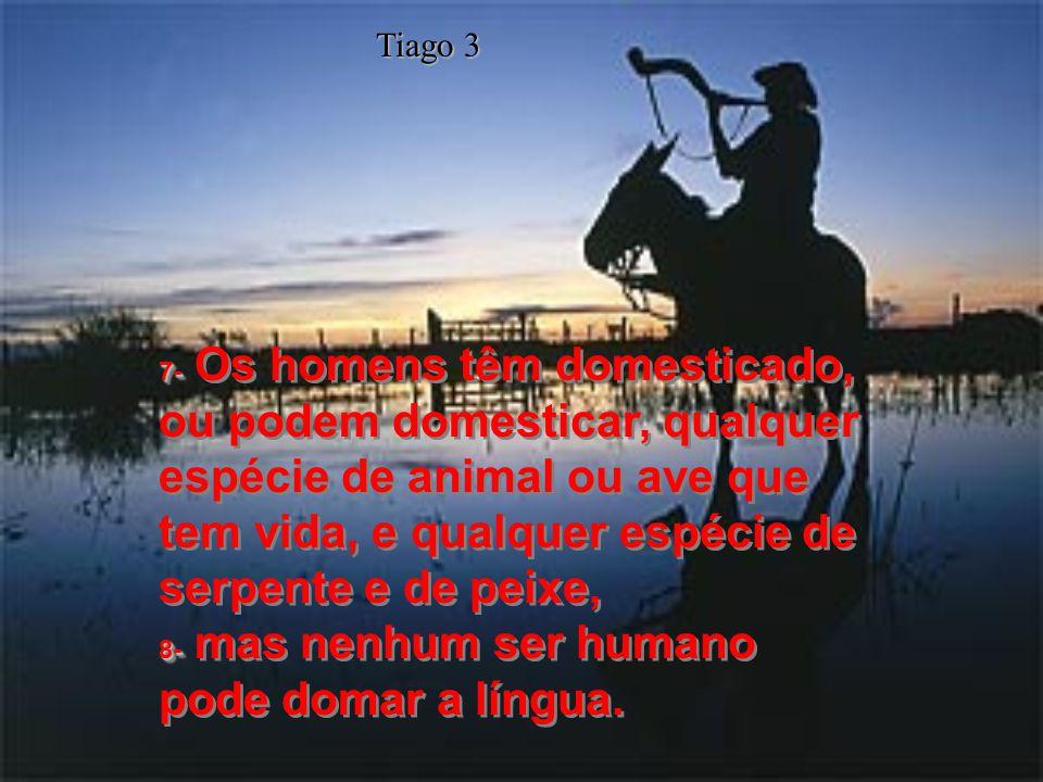 7- 8- 7- Os homens têm domesticado, ou podem domesticar, qualquer espécie de animal ou ave que tem vida, e qualquer espécie de serpente e de peixe, 8- mas nenhum ser humano pode domar a língua.