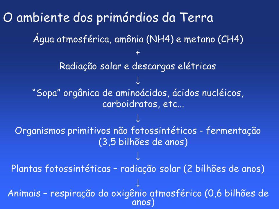 O ambiente dos primórdios da Terra Água atmosférica, amônia (NH4) e metano (CH4) + Radiação solar e descargas elétricas Sopa orgânica de aminoácidos, ácidos nucléicos, carboidratos, etc...