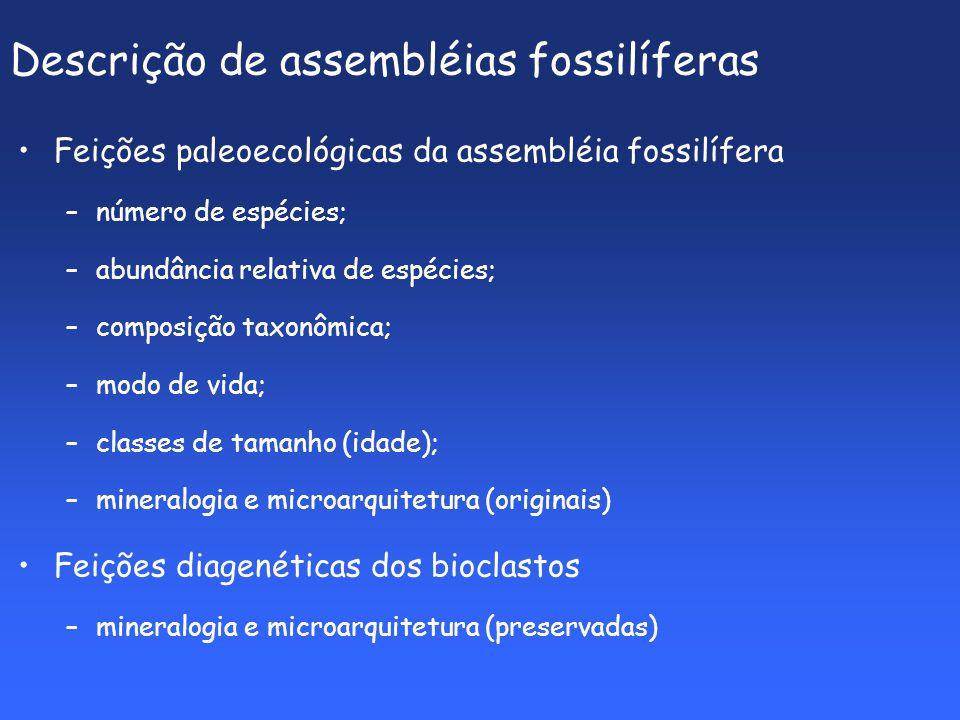 Descrição de assembléias fossilíferas Feições paleoecológicas da assembléia fossilífera –número de espécies; –abundância relativa de espécies; –composição taxonômica; –modo de vida; –classes de tamanho (idade); –mineralogia e microarquitetura (originais) Feições diagenéticas dos bioclastos –mineralogia e microarquitetura (preservadas)