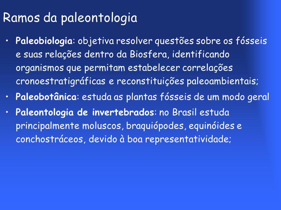 Ramos da paleontologia Paleobiologia: objetiva resolver questões sobre os fósseis e suas relações dentro da Biosfera, identificando organismos que permitam estabelecer correlações cronoestratigráficas e reconstituições paleoambientais; Paleobotânica: estuda as plantas fósseis de um modo geral Paleontologia de invertebrados: no Brasil estuda principalmente moluscos, braquiópodes, equinóides e conchostráceos, devido à boa representatividade;