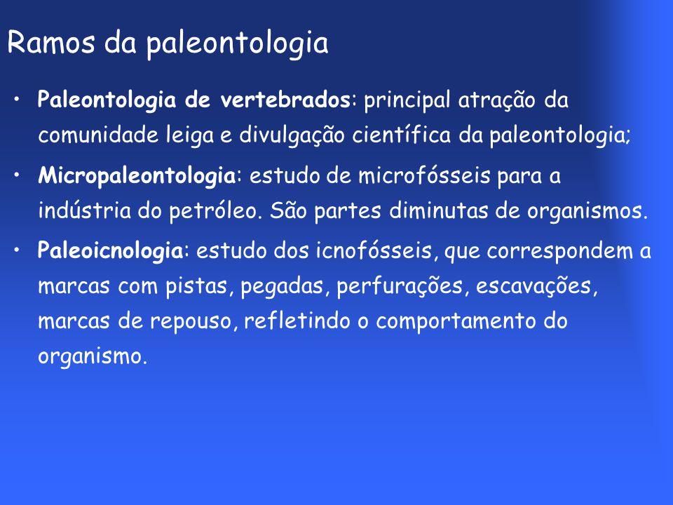 Ramos da paleontologia Paleontologia de vertebrados: principal atração da comunidade leiga e divulgação científica da paleontologia; Micropaleontologia: estudo de microfósseis para a indústria do petróleo.