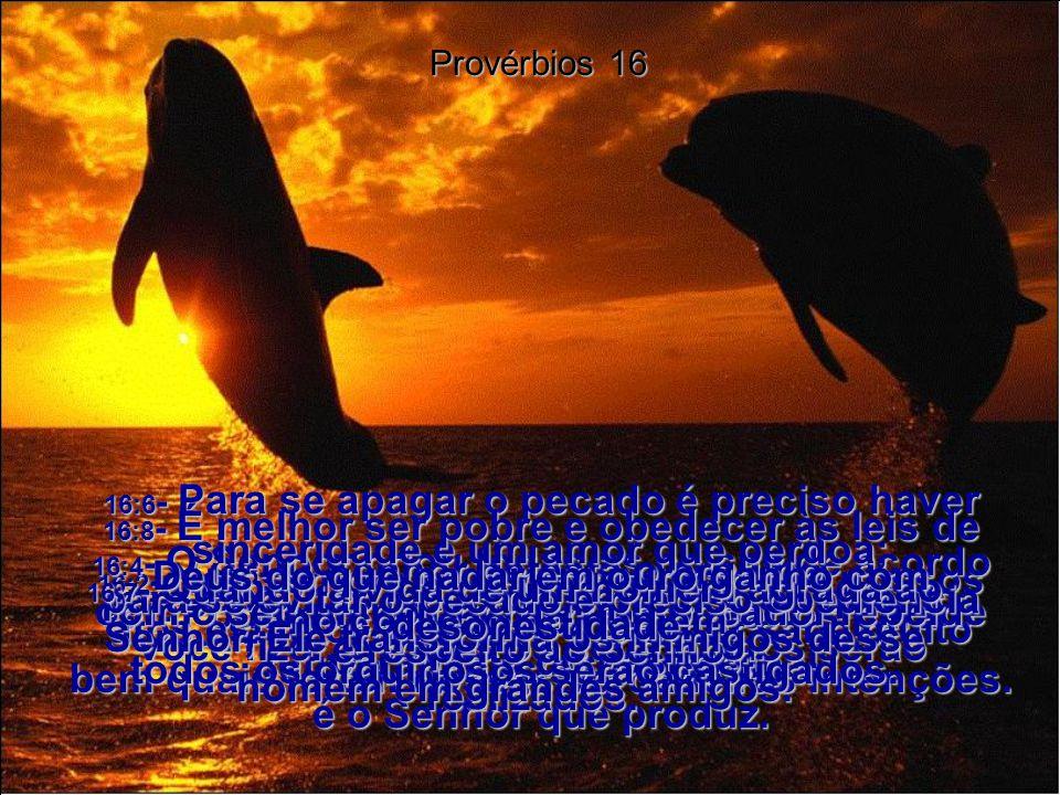 16:1- Podemos muito bem fazer planos para o futuro, mas o resultado final é o Senhor que produz.