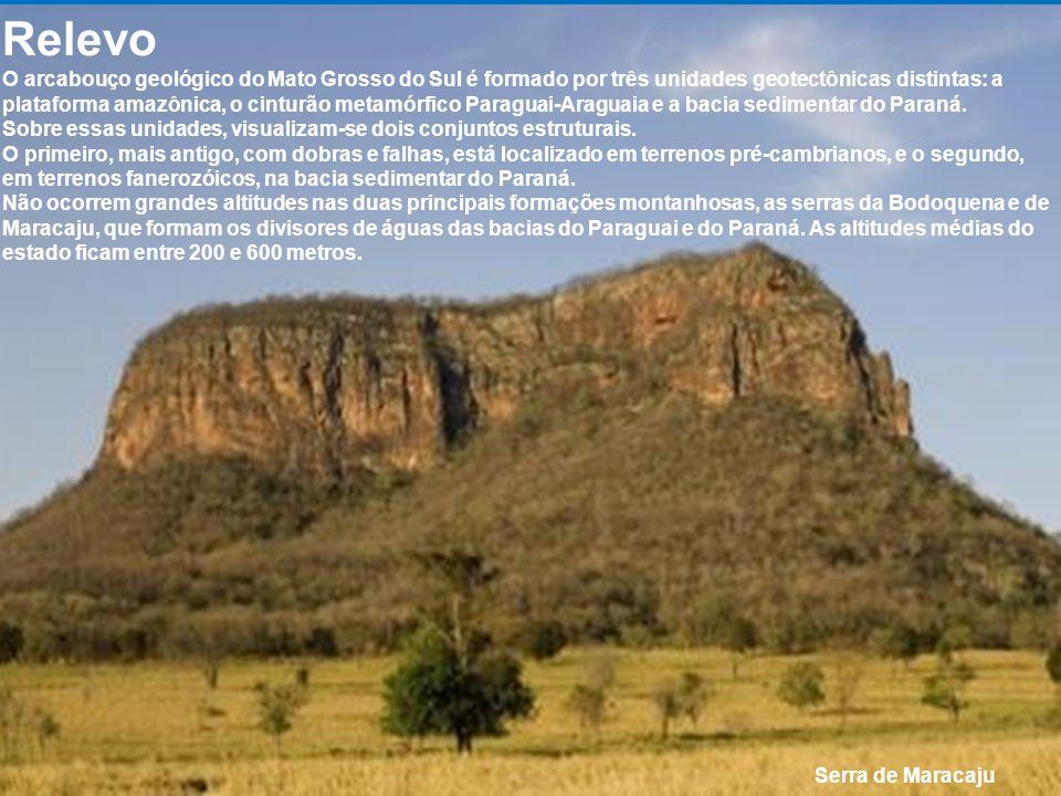 Pantanal, o maior ecossistema do estado. Na planície do Pantanal, no oeste do estado, durante o período de cheias do Rio Paraguai a região vira a maio