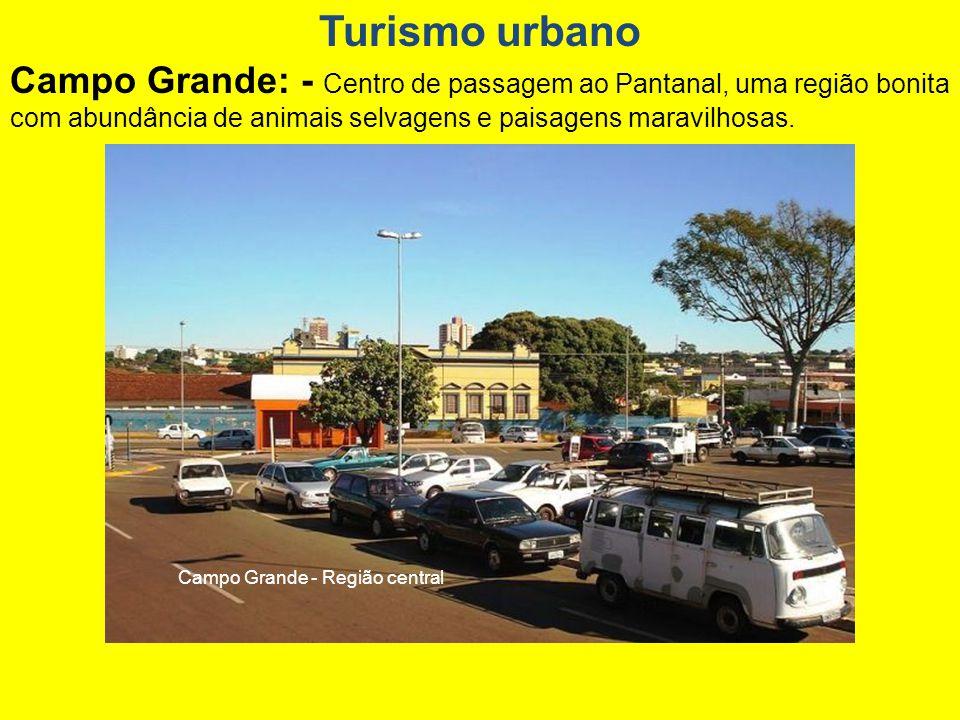 Campo Grande - Reserva Indígena Urbana Marçal de Souza.