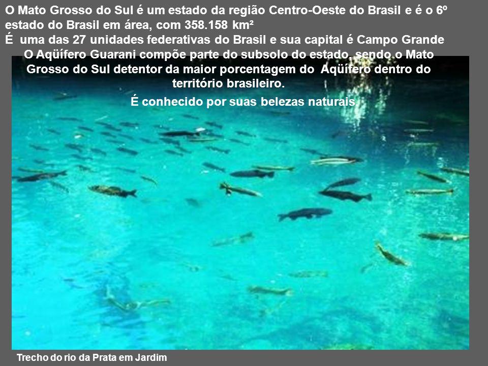 Trecho do rio da Prata em Jardim O Mato Grosso do Sul é um estado da região Centro-Oeste do Brasil e é o 6º estado do Brasil em área, com 358.158 km² É uma das 27 unidades federativas do Brasil e sua capital é Campo Grande O Aqüífero Guarani compõe parte do subsolo do estado, sendo o Mato Grosso do Sul detentor da maior porcentagem do Aqüífero dentro do território brasileiro.
