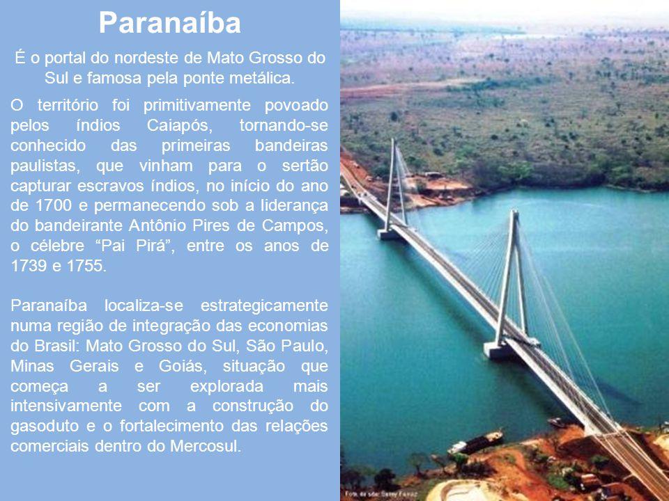 Sidrolândia Sidrolândia começou com a implantação de fazendas de gado. Mas o povoado só se formou com a chegada em 1926 de Sidrônio Antunes de Andrade