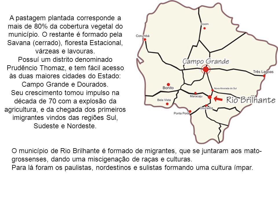 População de 27.903 habitantes; PIB de R$ 408.443.000; área total de 3.998,1 km² e 4,4070 km² de área urbana, fica entre Campo Grande e Dourados. Clim